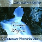 Tranquil Lagoon Songs