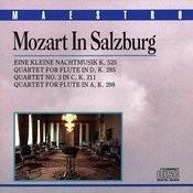Mozart In Salzburg Songs
