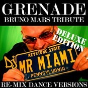 Grenade (Bruno Mars Tribute) (Re-Mix Dance Versions) Songs