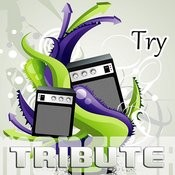 Try (Special Edition Tribute To Pink) Songs
