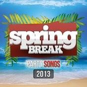 Spring Break Party Songs 2013 Songs