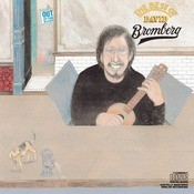 The Best Of David Bromberg Songs