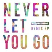 Never Let You Go (Remixes) Songs