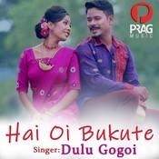 Hai Oi Bukute Dulu Gogoi Full Mp3 Song