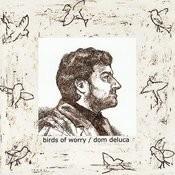 Birds of Worry Songs
