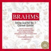 Brahms: Chamber Music Songs
