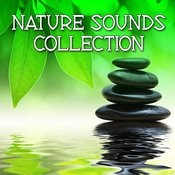 Nature Sounds Collection (Relax, Healing, Spa, Meditation) Songs