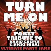Turn Me On (Party Tribute To David Guetta & Nicki Minaj) Songs