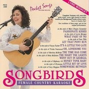 The Hits Of Songbirds - Female Country Karaoke Songs