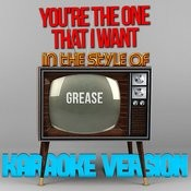 You're The One That I Want (In The Style Of Grease) [Karaoke Version] - Single Songs