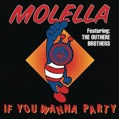 If You Wanna Party (Pura Vida Mix) Song