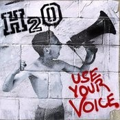 Use Your Voice Song