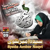 Aey Mola Tera Shukriya, Vol. 09 Songs