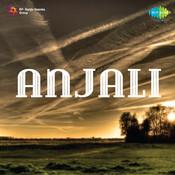 Gulli Danda Song