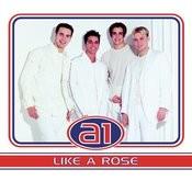 Like A Rose Songs
