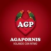Agapornis - Volando Con Ritmo Songs