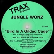 Bird In A Gilded Cage Songs