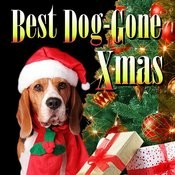 Dogs Fight For Christmas Bone Song