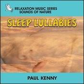 Sleep Lullabies Songs