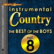 Instrumental Country: The Best Of The Boys, Vol. 8 Songs