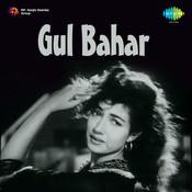 Gul Bahar Songs