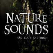Nature Sounds For Body And Mind Songs