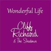Wonderful Life Songs