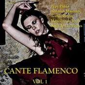 Cante Flamenco Vol.1 Songs
