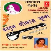 Halood Gandaar Phool Songs