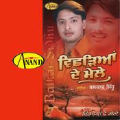 Aape Tainu Rab B Nibroo Song