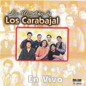 Gatito Del Verano (En Vivo) Song