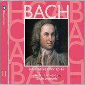 Cantata No.32 Liebster Jesu, mein Verlangen BWV32 : IV Recitative -