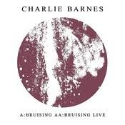 Bruising Songs