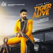 Tiger Alive Song