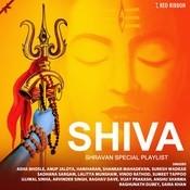 Shivam Kadam Song