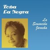 La Sensacin Jarocha Songs