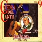 Catedra Del Cante Vol. 9: Jose Palanca Songs