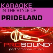 Karaoke - In The Style Of Prideland (Professional Performance Tracks) Songs