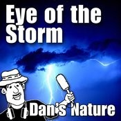 Eye Of The Storm (Nature Sounds) Songs