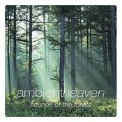 Ambient Heaven - Sounds Of The Forest Songs