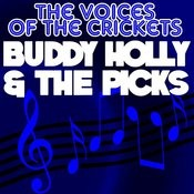 The Voices Of The Crickets Songs