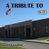 A Tribute To Glee Sweet Caroline, Vol. 1 Songs