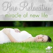 Pure Relaxation: Miracle Of New Life Songs