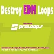 Destroy Edm Loops Songs