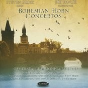 Concerto For Horn And Orchestra No. 2 In E-Flat Major: II. Romance - Adagio Non Tanto Song
