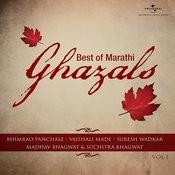 Best of Marathi Ghazals Songs