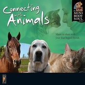 Connecting With Animals Songs
