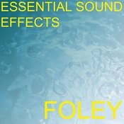 Essential Sound Effects 3 - Foley Songs