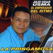 La Pringamosa Songs