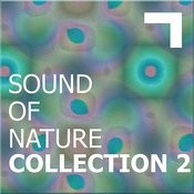 Sound Of The Nature – Collection 2 Songs